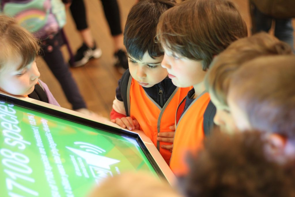 Children looking at museum display